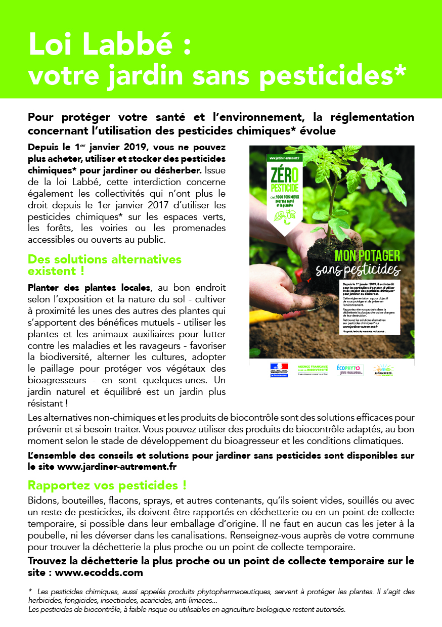 Article presse_vertical