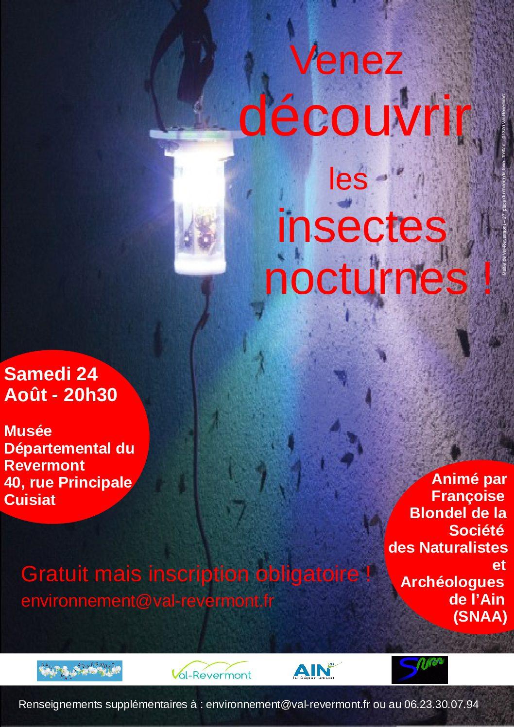 Découverte des insectes nocturnes
